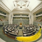 Banana in parliament